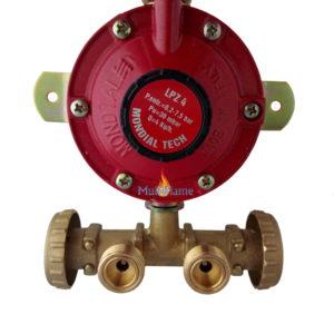 Gasdrukregelaar met muurplaat en 2 regelbare gasfles aansluitingen