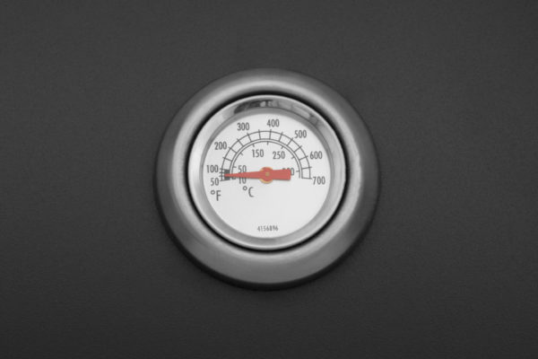 Mustang gas grill Nashville thermometer