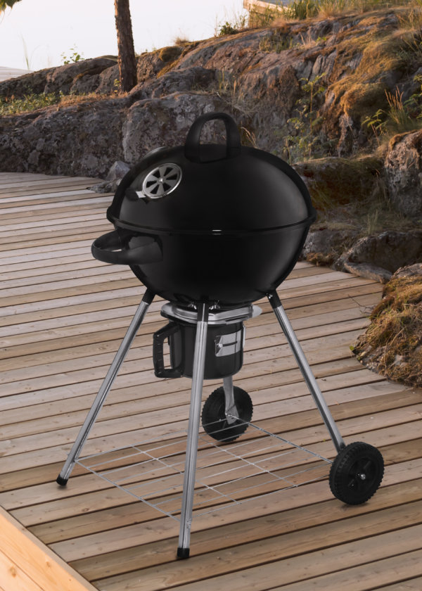 mustang houtskool barbecue pilot