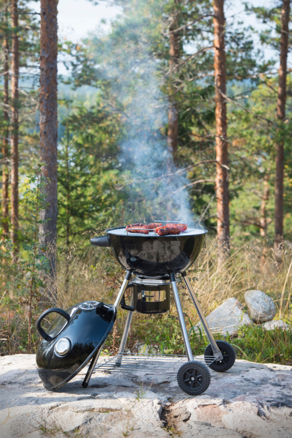 mustang houtskool grill pilot