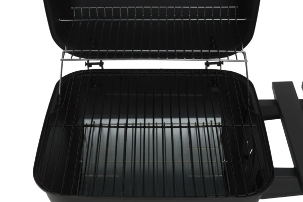 mustang tempest barbecue roosters