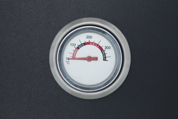 mustang bbq pizza bak oven thermometer
