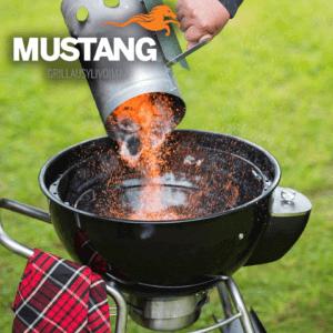 Mustang houtskool starter in actie